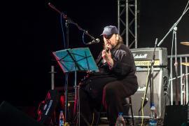 Борис Булкин. Первый гитарный фестиваль 2015 Плёс